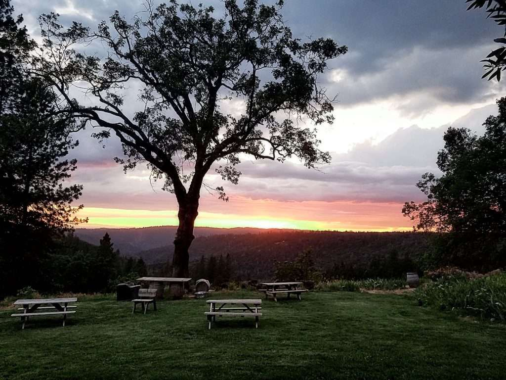 WOFFORD_sunset